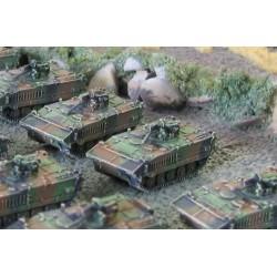 CinC F005 AMX10P